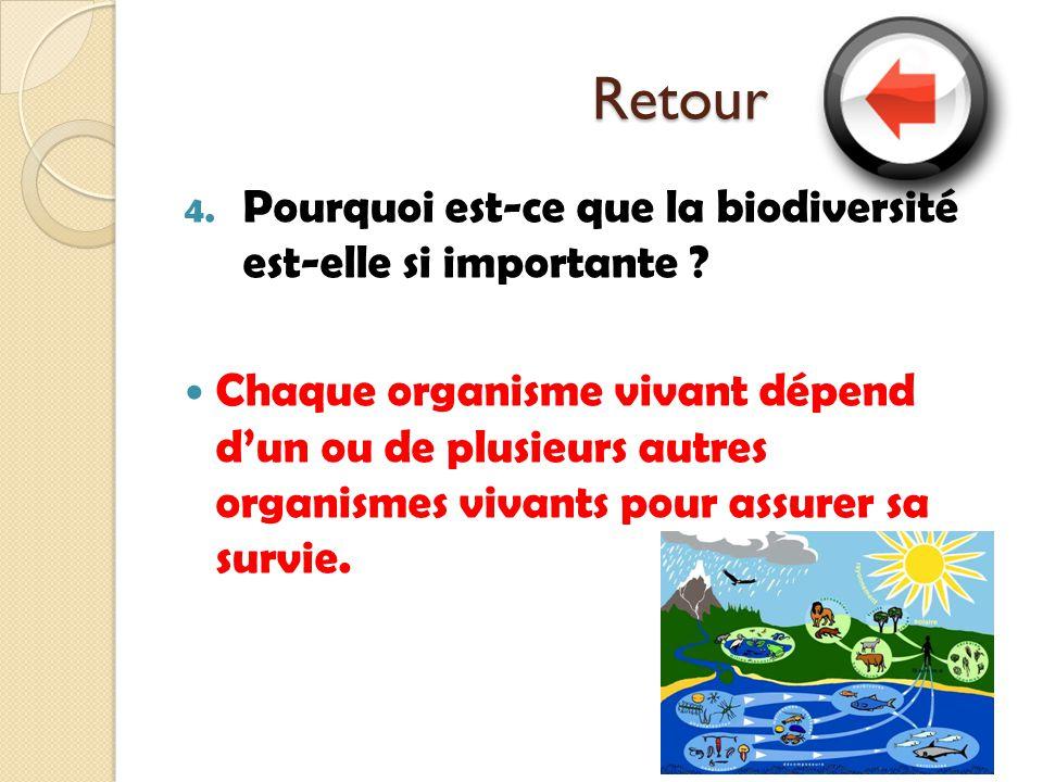 Retour 4. Pourquoi est-ce que la biodiversité est-elle si importante ? Chaque organisme vivant dépend dun ou de plusieurs autres organismes vivants po