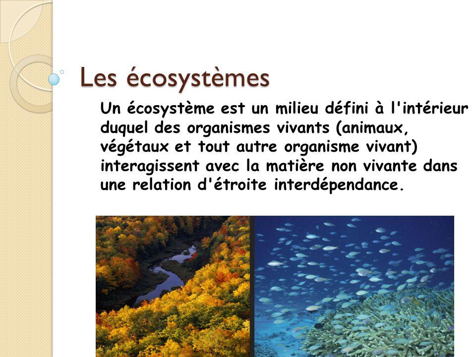 Les écosystèmes Un écosystème est un milieu défini à l'intérieur duquel des organismes vivants (animaux, végétaux et tout autre organisme vivant) inte