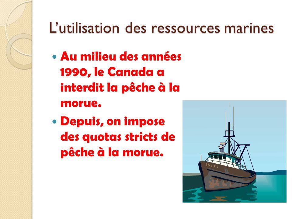 Lutilisation des ressources marines Au milieu des années 1990, le Canada a interdit la pêche à la morue. Depuis, on impose des quotas stricts de pêche