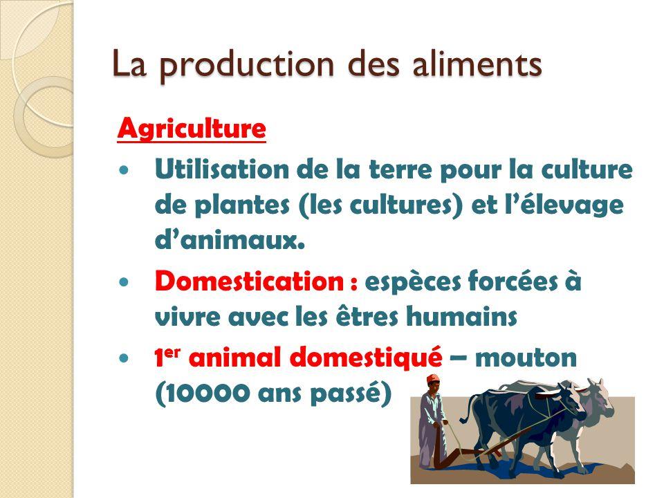 La production des aliments Agriculture Utilisation de la terre pour la culture de plantes (les cultures) et lélevage danimaux. Domestication : espèces