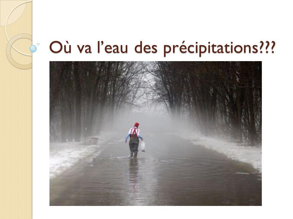 Où va leau des précipitations???