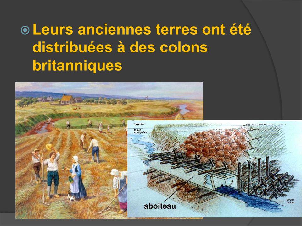 Leurs anciennes terres ont été distribuées à des colons britanniques