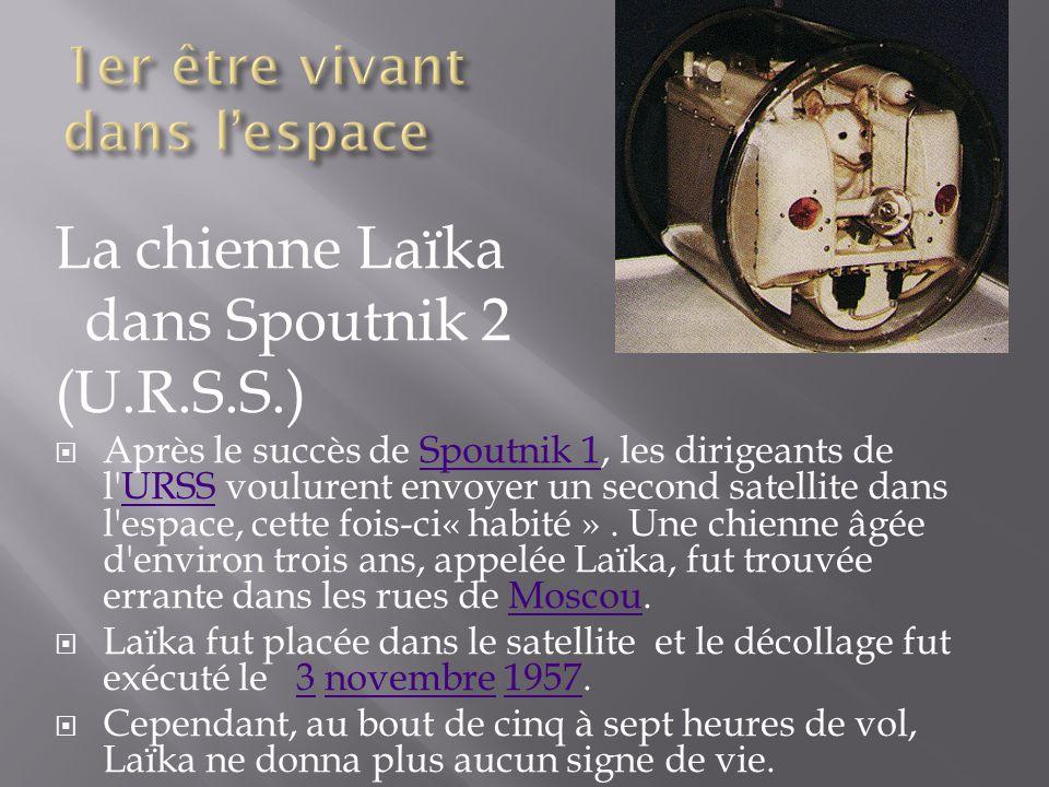 La chienne Laïka dans Spoutnik 2 (U.R.S.S.) Après le succès de Spoutnik 1, les dirigeants de l'URSS voulurent envoyer un second satellite dans l'espac