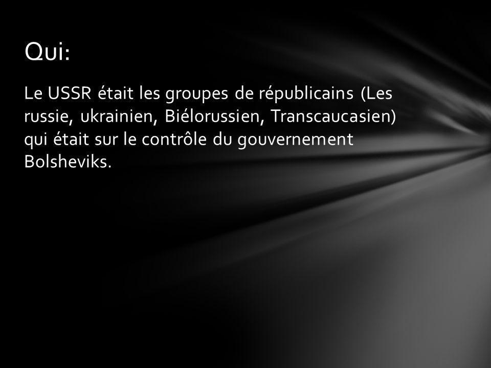 Le USSR était les groupes de républicains (Les russie, ukrainien, Biélorussien, Transcaucasien) qui était sur le contrôle du gouvernement Bolsheviks.
