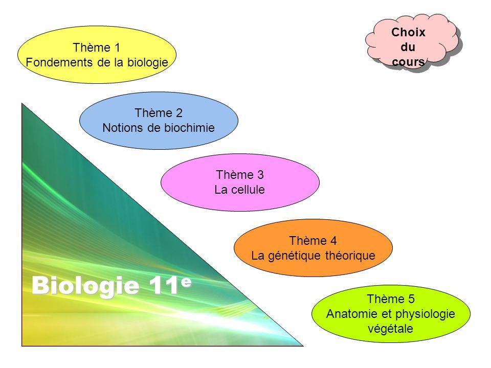 Thème 1 Fondements de la biologie Thème 5 Anatomie et physiologie végétale Thème 3 La cellule Thème 4 La génétique théorique Thème 2 Notions de biochi