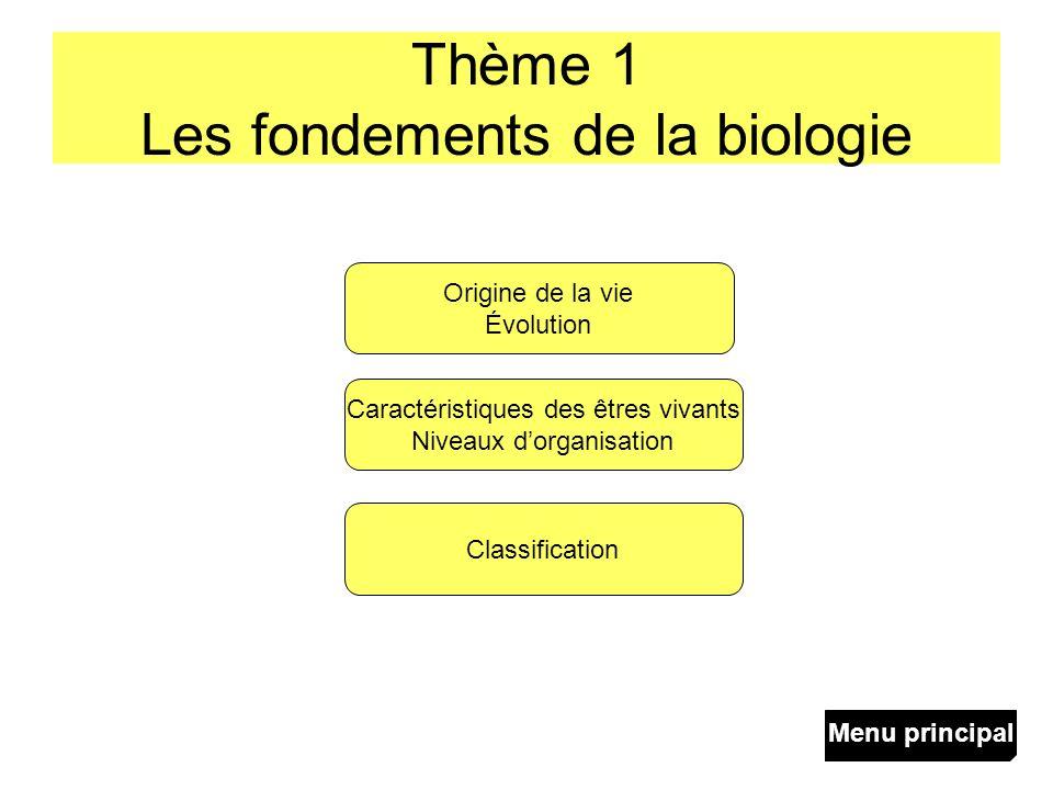Thème 1 Les fondements de la biologie Caractéristiques des êtres vivants Niveaux dorganisation Classification Origine de la vie Évolution Menu princip