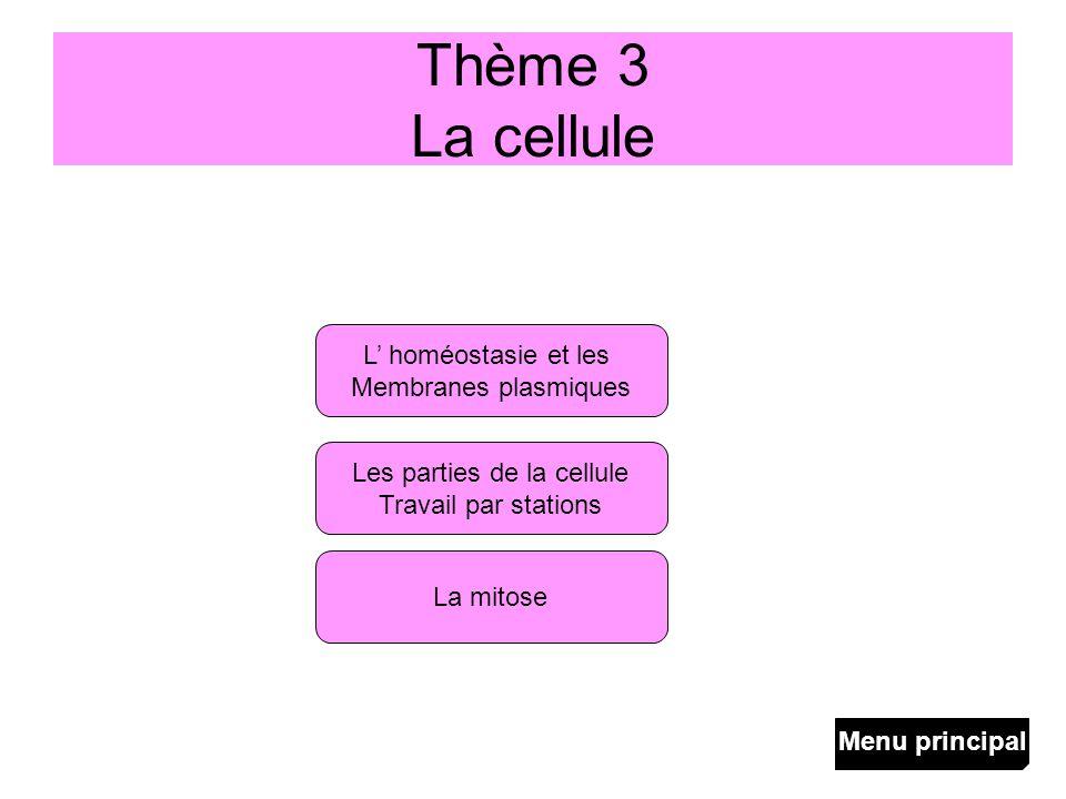 Thème 3 La cellule L homéostasie et les Membranes plasmiques La mitose Les parties de la cellule Travail par stations Menu principal