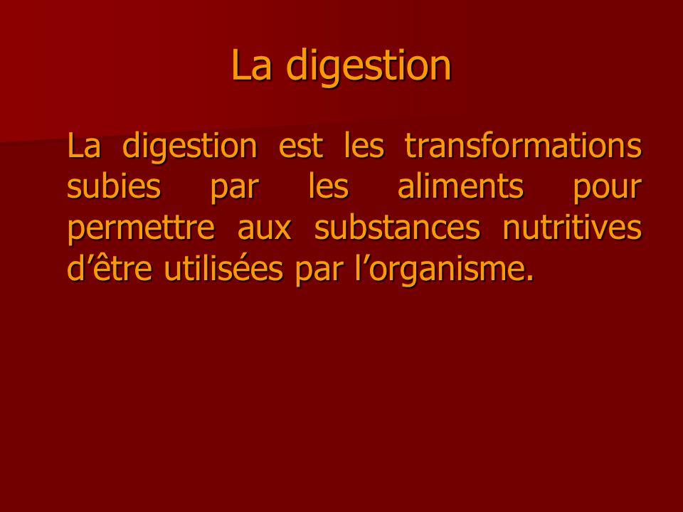 La digestion La digestion est les transformations subies par les aliments pour permettre aux substances nutritives dêtre utilisées par lorganisme.