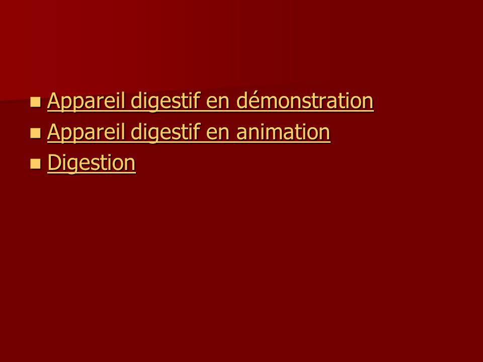 Appareil digestif en démonstration Appareil digestif en démonstration Appareil digestif en démonstration Appareil digestif en démonstration Appareil digestif en animation Appareil digestif en animation Appareil digestif en animation Appareil digestif en animation Digestion Digestion Digestion
