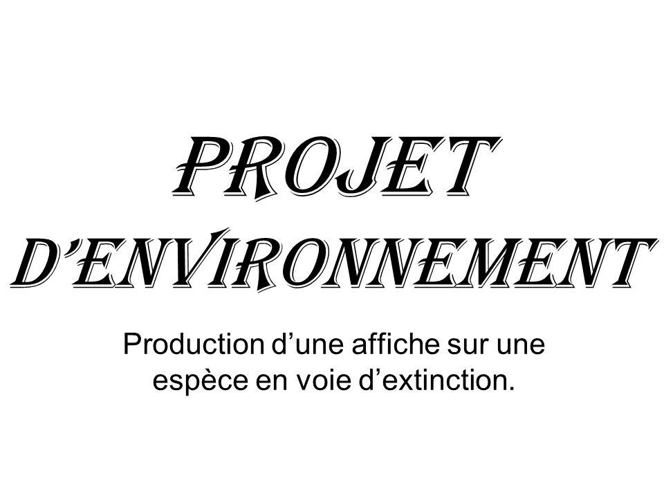 Projet dEnvironnement Production dune affiche sur une espèce en voie dextinction.