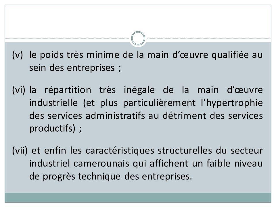 (v)le poids très minime de la main dœuvre qualifiée au sein des entreprises ; (vi)la répartition très inégale de la main dœuvre industrielle (et plus