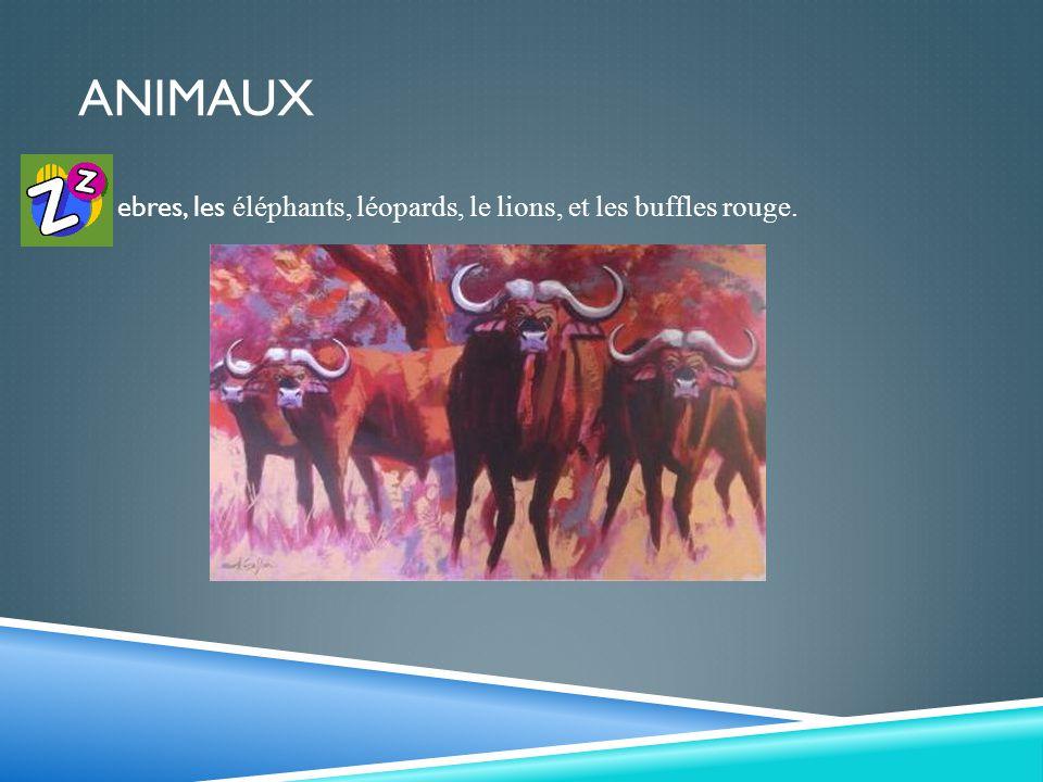 ANIMAUX ebres, les éléphants, léopards, le lions, et les buffles rouge.