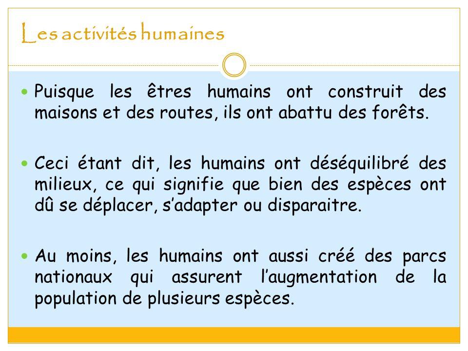 Les activités humaines Puisque les êtres humains ont construit des maisons et des routes, ils ont abattu des forêts.