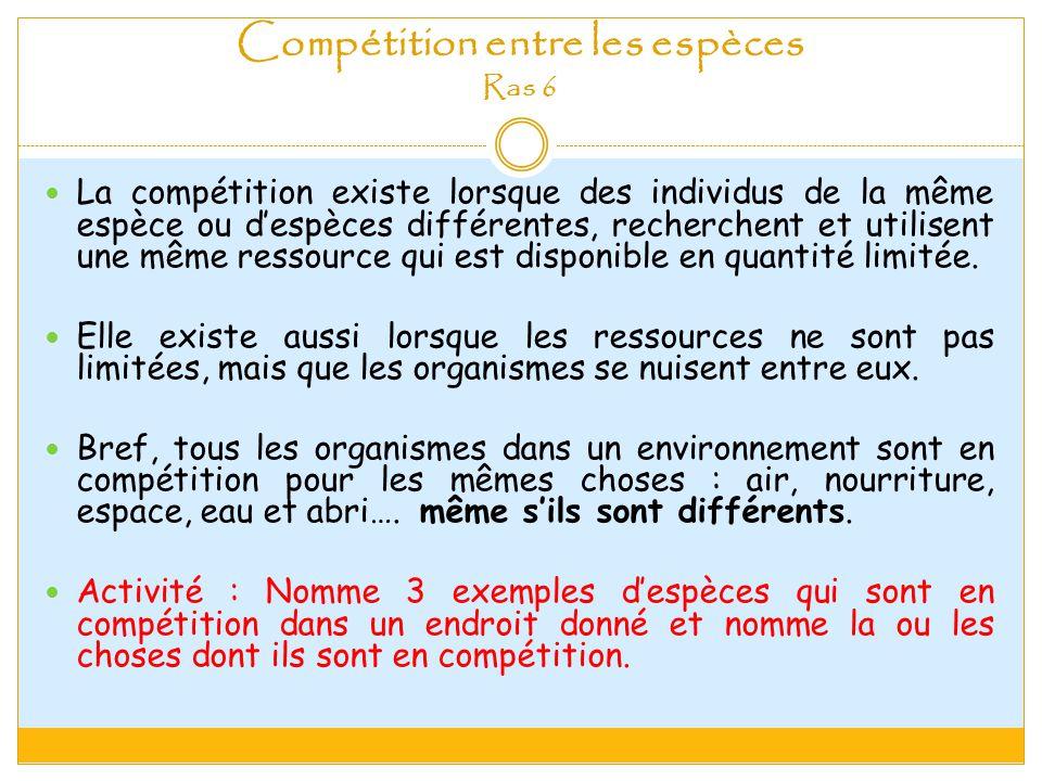 Compétition entre les espèces Ras 6 La compétition existe lorsque des individus de la même espèce ou despèces différentes, recherchent et utilisent une même ressource qui est disponible en quantité limitée.
