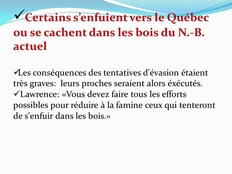 Certains senfuient vers le Québec ou se cachent dans les bois du N.-B. actuel Les conséquences des tentatives d'évasion étaient très graves: leurs pro