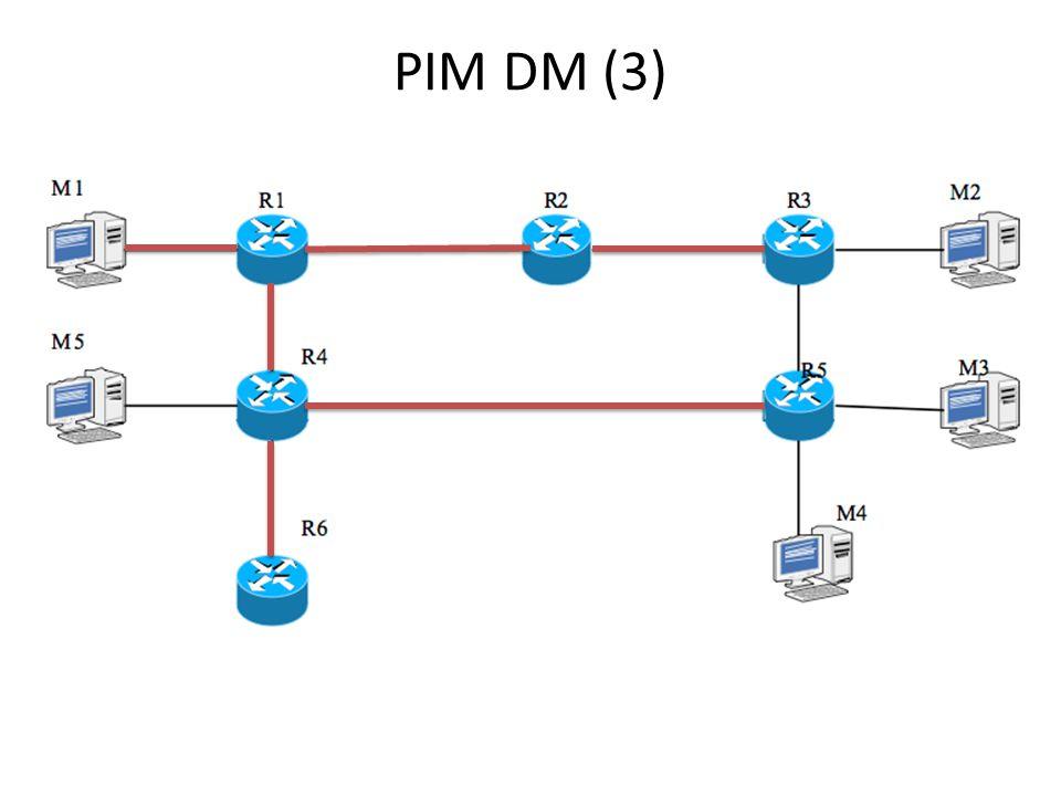 PIM DM (3)