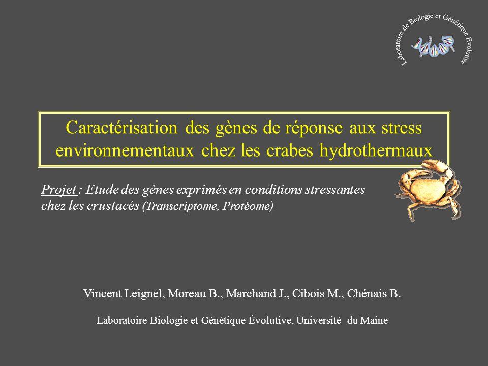 Caractérisation des gènes de réponse aux stress environnementaux chez les crabes hydrothermaux Vincent Leignel, Moreau B., Marchand J., Cibois M., Ché