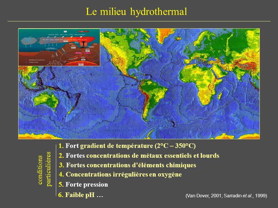 Le milieu hydrothermal 1. Fort gradient de température (2°C – 350°C) 5. Forte pression 4. Concentrations irrégulières en oxygène 2. Fortes concentrati