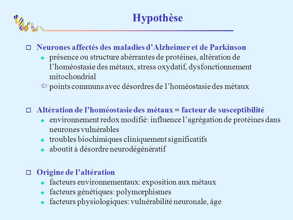 Hypothèse o Neurones affectés des maladies dAlzheimer et de Parkinson présence ou structure abérrantes de protéines, altération de lhoméostasie des métaux, stress oxydatif, dysfonctionnement mitochondrial ïpoints communs avec désordres de lhoméostasie des métaux o Altération de lhoméostasie des métaux = facteur de susceptibilité environnement redox modifié: influence lagrégation de protéines dans neurones vulnérables troubles biochimiques cliniquement significatifs aboutit à désordre neurodégénératif o Origine de laltération facteurs environnementaux: exposition aux métaux facteurs génétiques: polymorphismes facteurs physiologiques: vulnérabilité neuronale, âge