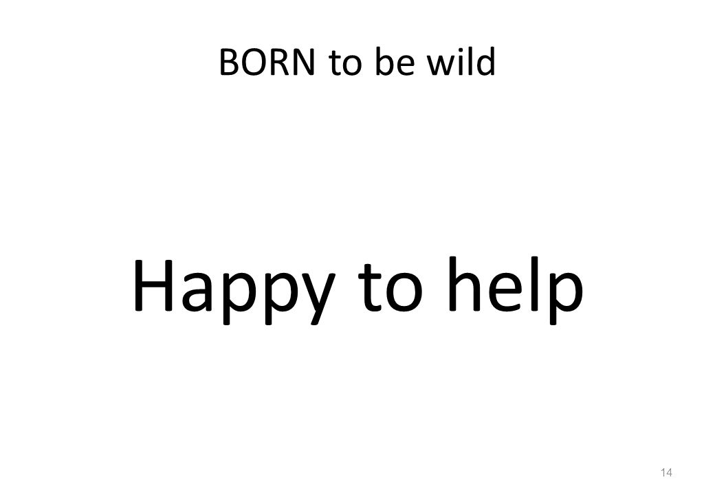BORN to be wild Happy to help 14