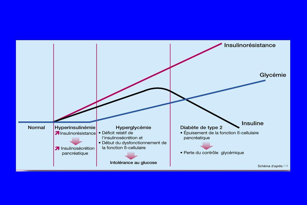 Diabète de type 2 : - Anomalie du pic précoce dinsulinosécrétion - Insulinorésistance dans le muscle et le tissu adipeux - Anomalie de leffet de linsuline dans le foie qui augmente la production hépatique de glucose
