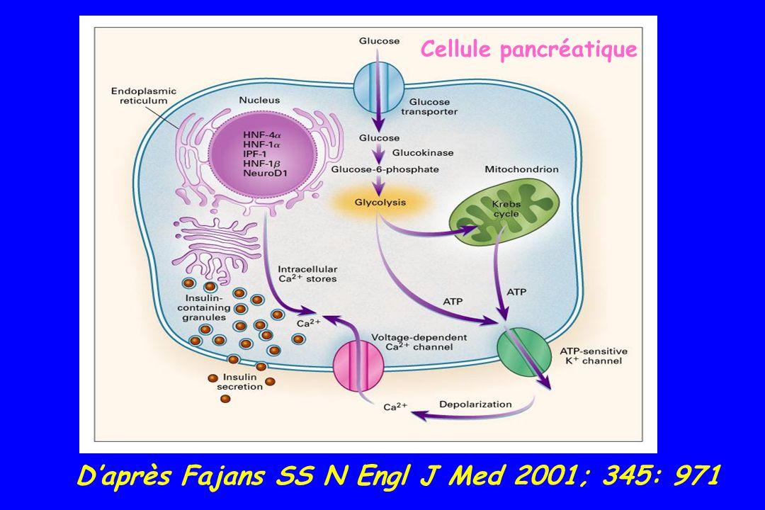 Diabète de type mitochondrial 0.5-2.8 % diabète surdité neurosensorielle transmis par la mère mt DNA 3243 codant pour un tRNA Leu Ann Intern Med 2001; 134: 721 myopathie, encéphalopathie, acidose lactique = syndrome MELAS