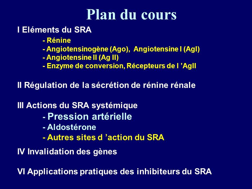 Plan du cours I Eléments du SRA - Rénine - Angiotensinogène (Ago), Angiotensine I (AgI) - Angiotensine II (Ag II) - Enzyme de conversion, Récepteurs de l AgII II Régulation de la sécrétion de rénine rénale III Actions du SRA systémique - Pression artérielle - Aldostérone - Autres sites d action du SRA IV Invalidation des gènes VI Applications pratiques des inhibiteurs du SRA