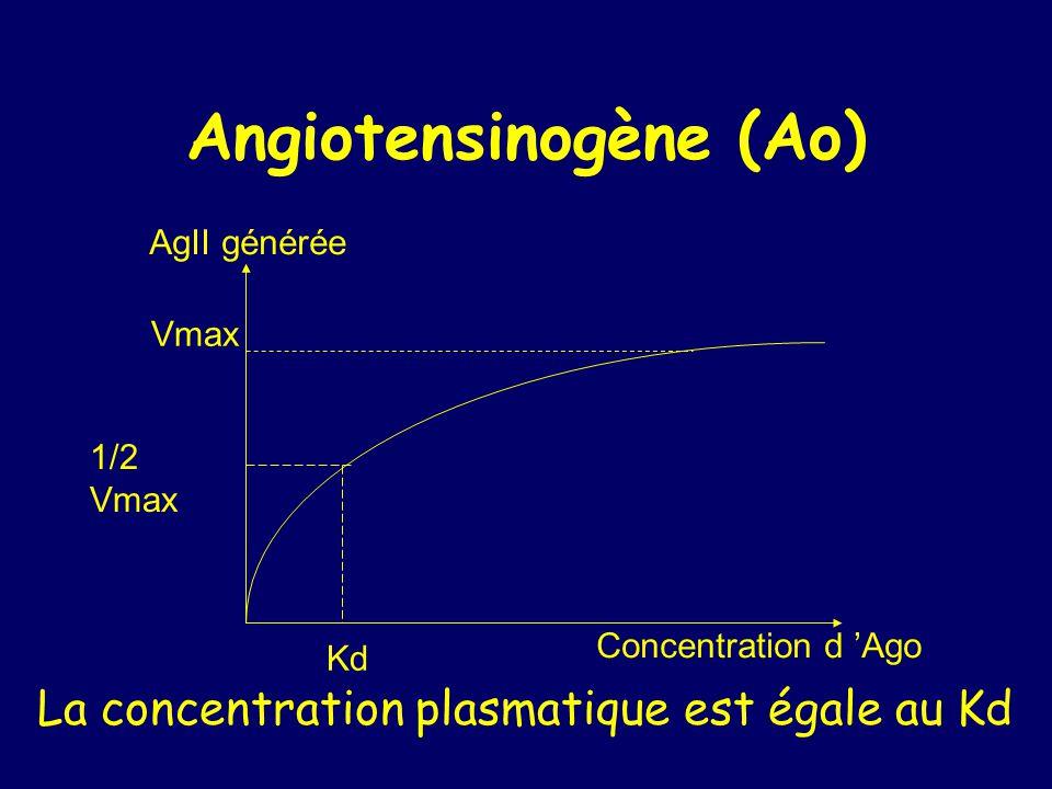 Angiotensinogène (Ao) AgII générée Vmax 1/2 Vmax Kd Concentration d Ago La concentration plasmatique est égale au Kd