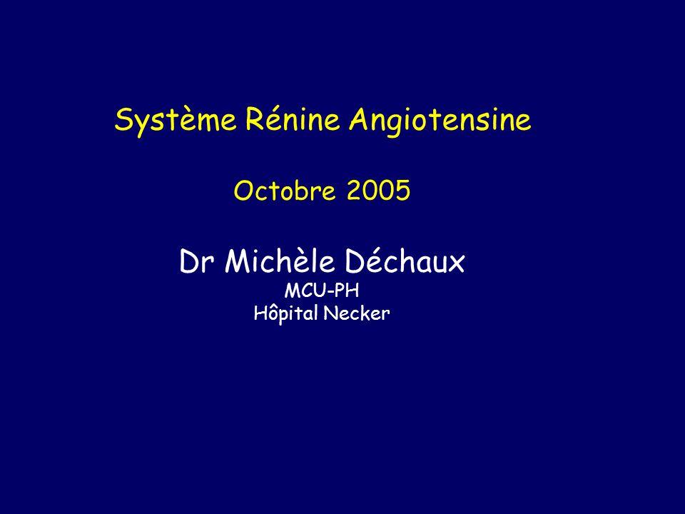 Système Rénine Angiotensine Octobre 2005 Dr Michèle Déchaux MCU-PH Hôpital Necker