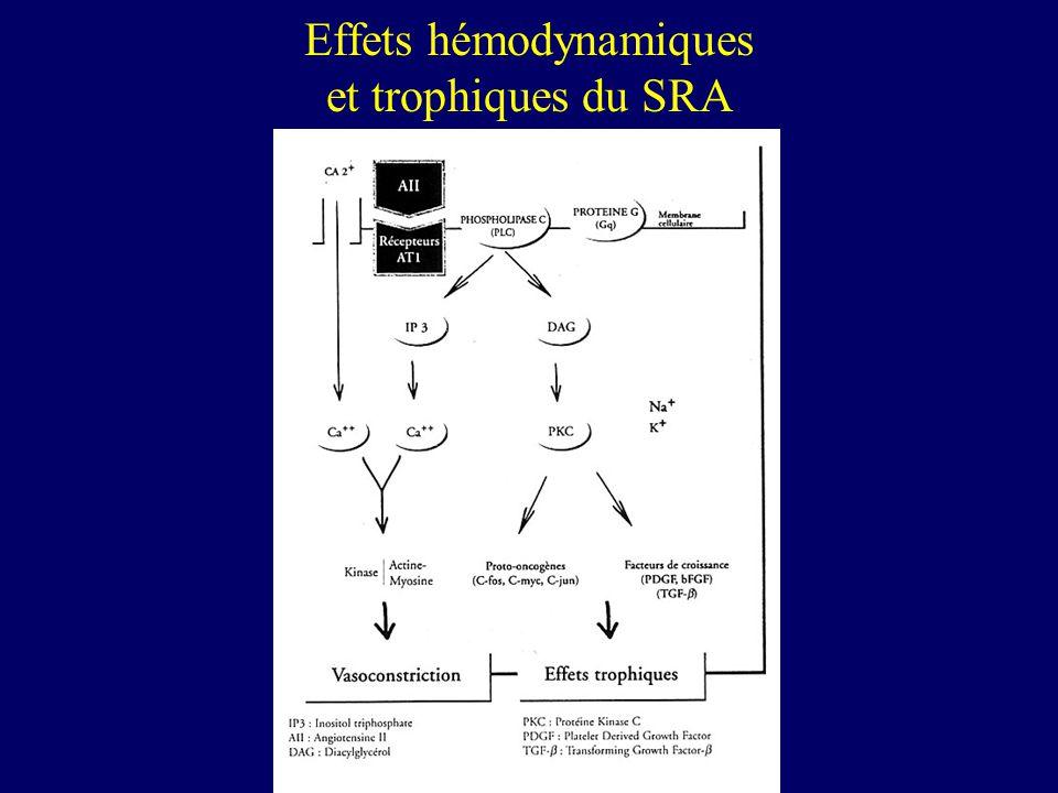 Effets hémodynamiques et trophiques du SRA