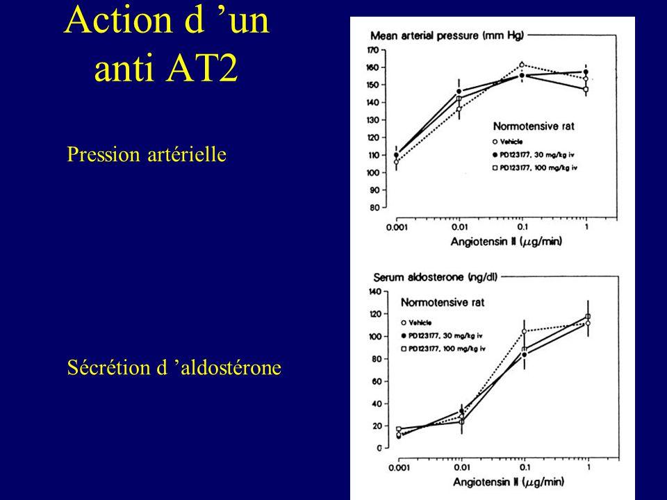 Action d un anti AT2 Pression artérielle Sécrétion d aldostérone