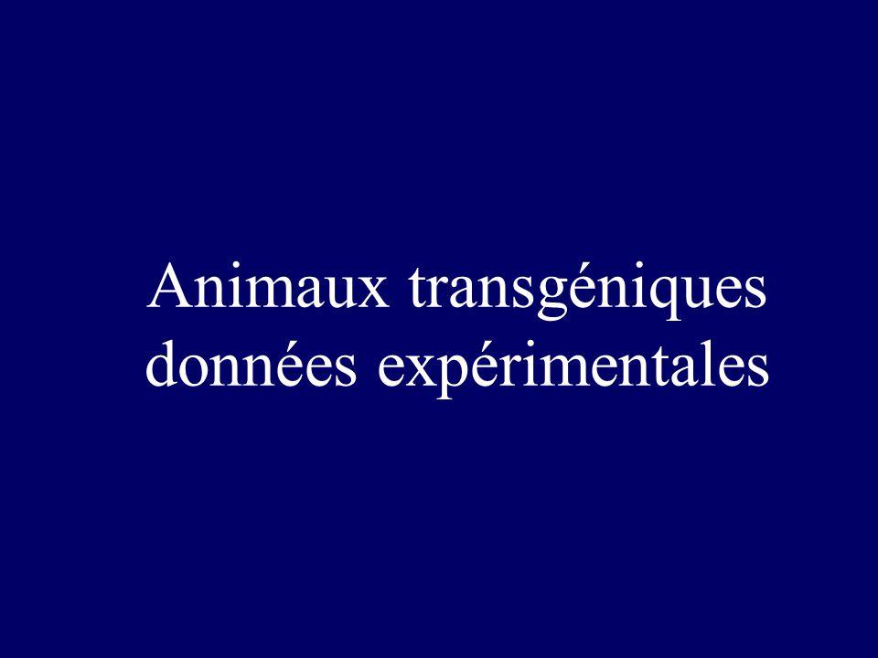 Animaux transgéniques données expérimentales