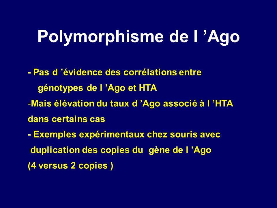 Polymorphisme de l Ago - Pas d évidence des corrélations entre génotypes de l Ago et HTA -Mais élévation du taux d Ago associé à l HTA dans certains cas - Exemples expérimentaux chez souris avec duplication des copies du gène de l Ago (4 versus 2 copies )