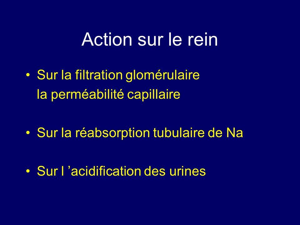 Action sur le rein Sur la filtration glomérulaire la perméabilité capillaire Sur la réabsorption tubulaire de Na Sur l acidification des urines