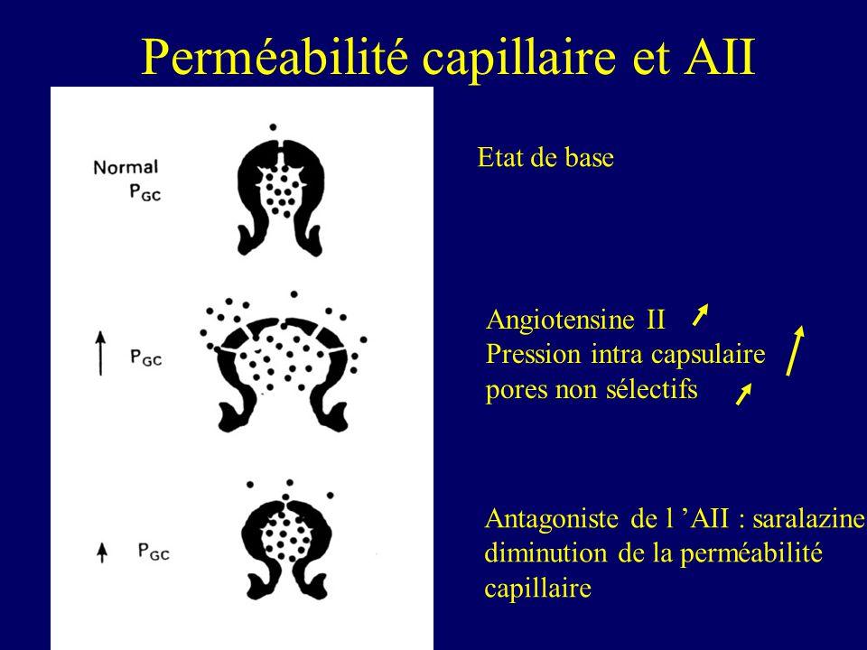 Perméabilité capillaire et AII Angiotensine II Pression intra capsulaire pores non sélectifs Antagoniste de l AII : saralazine diminution de la perméabilité capillaire Etat de base