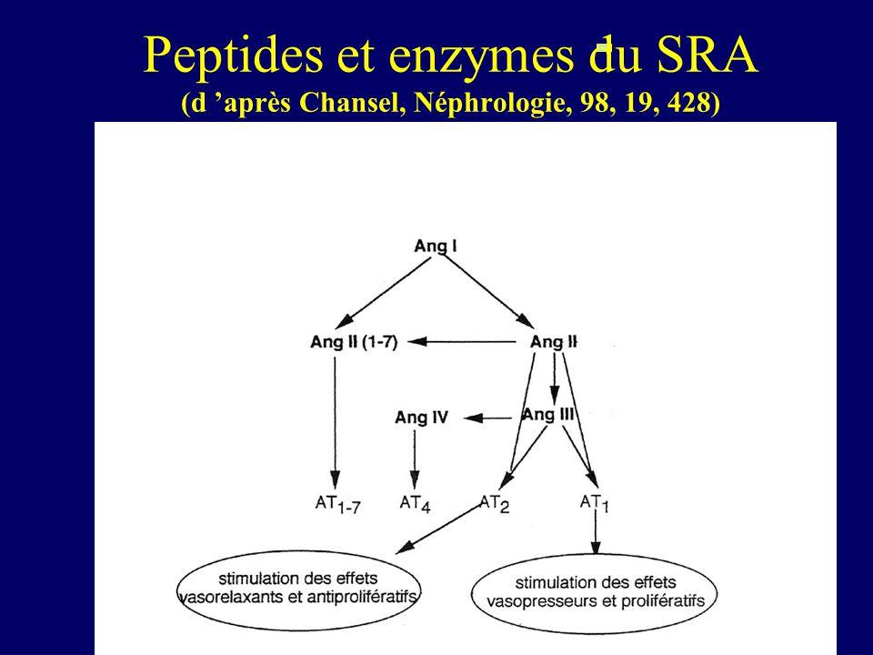 Peptides et enzymes du SRA (d après Chansel, Néphrologie, 98, 19, 428)