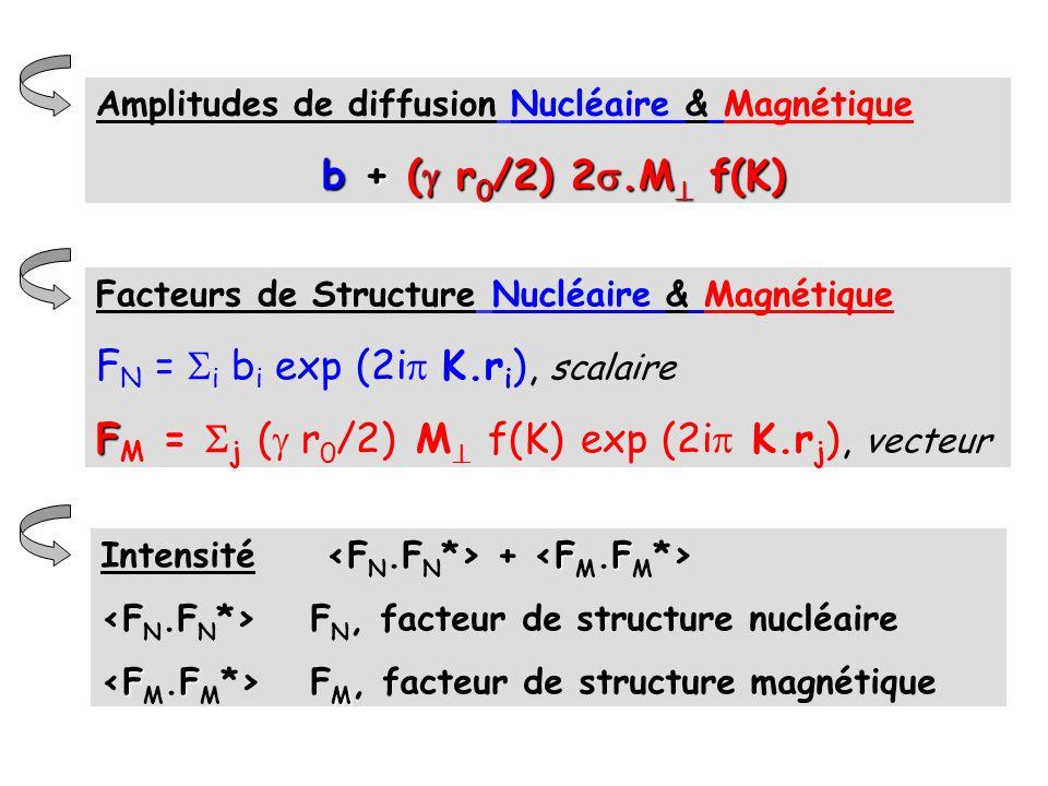 Facteurs de Structure Nucléaire & Magnétique F N = i b i exp (2i K.r i ), scalaire F F M = j ( r 0 /2) M f(K) exp (2i K.r j ), vecteur FF Intensité +