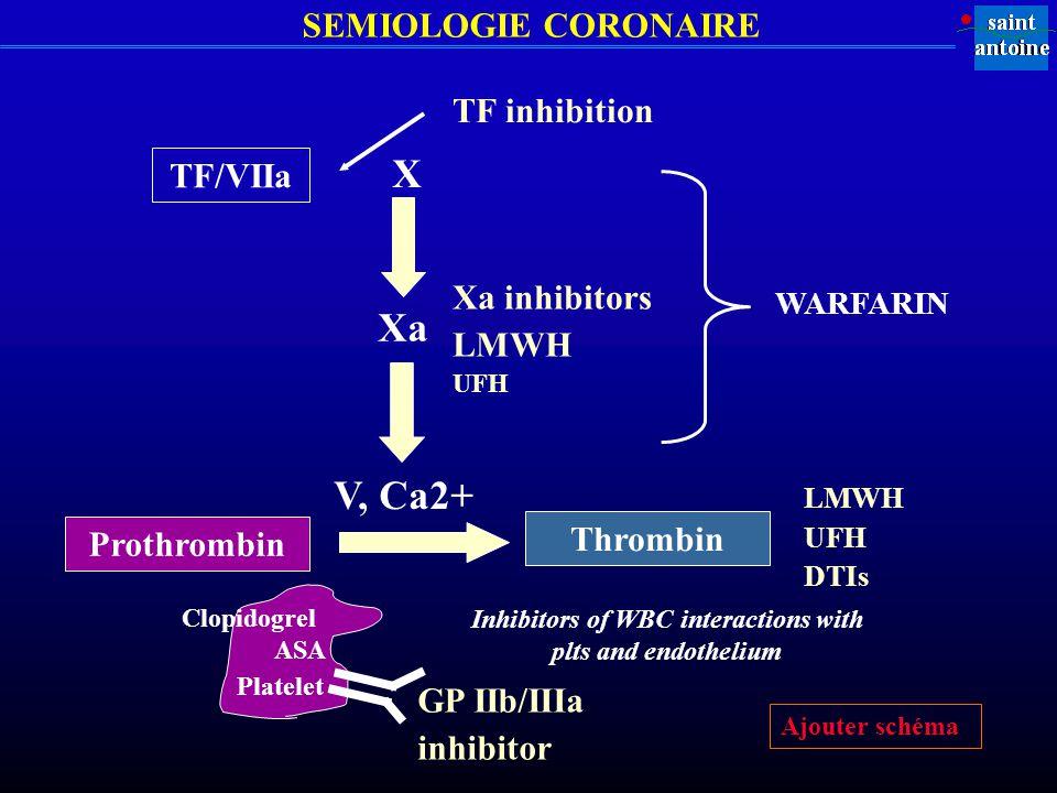 SEMIOLOGIE CORONAIRE TF inhibition TF/VIIa Xa inhibitors LMWH UFH X Xa V, Ca2+ Prothrombin Thrombin LMWH UFH DTIs Inhibitors of WBC interactions with