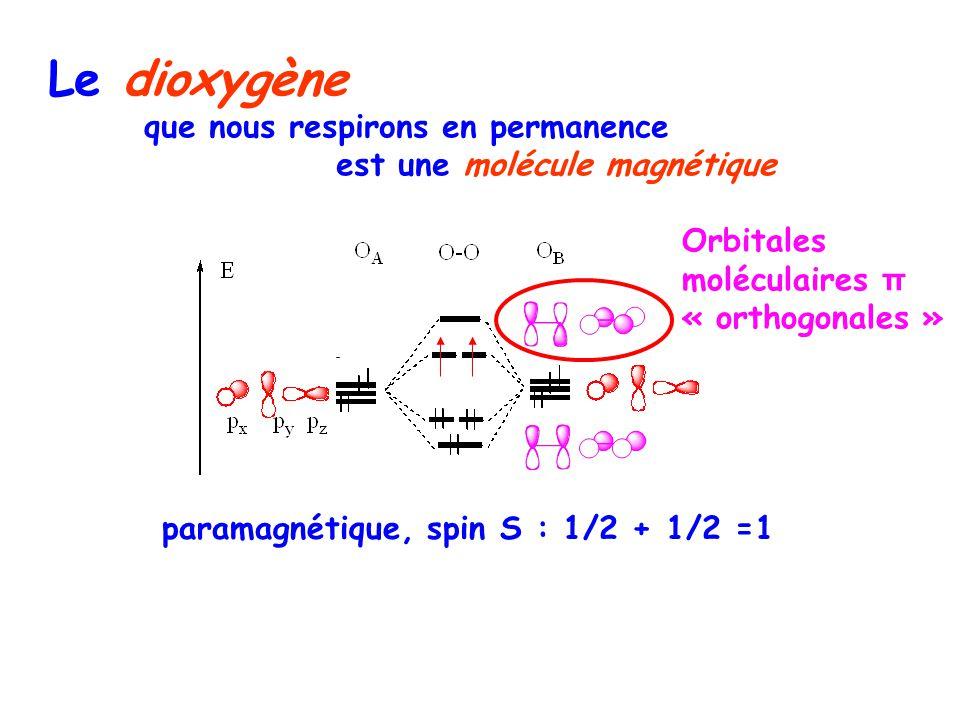 Le dioxygène que nous respirons en permanence est une molécule magnétique paramagnétique, spin S : 1/2 + 1/2 =1 Orbitales moléculaires π « orthogonales »