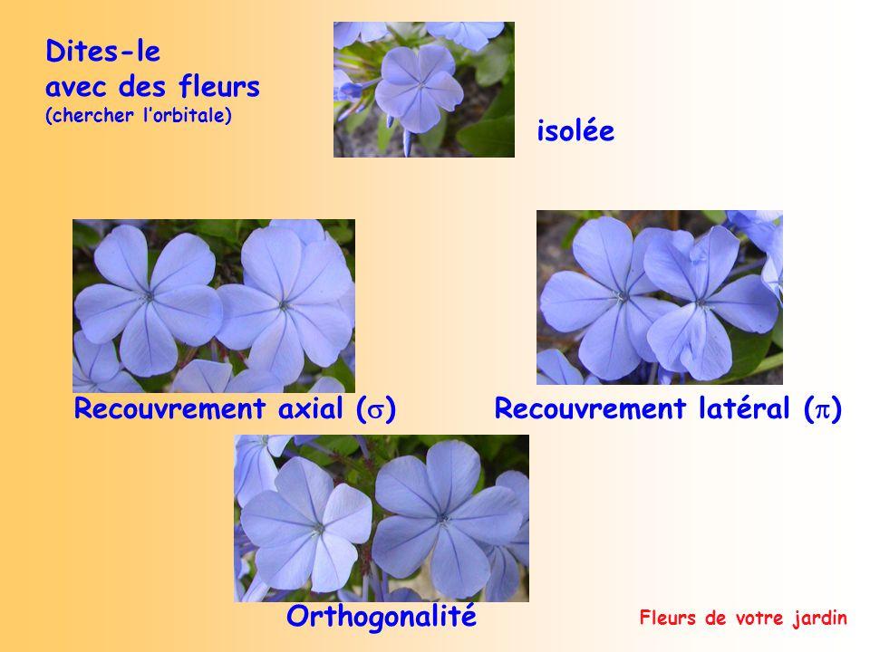 Fleurs de votre jardin Dites-le avec des fleurs (chercher lorbitale) Recouvrement latéral ( ) Recouvrement axial ( ) Orthogonalité isolée