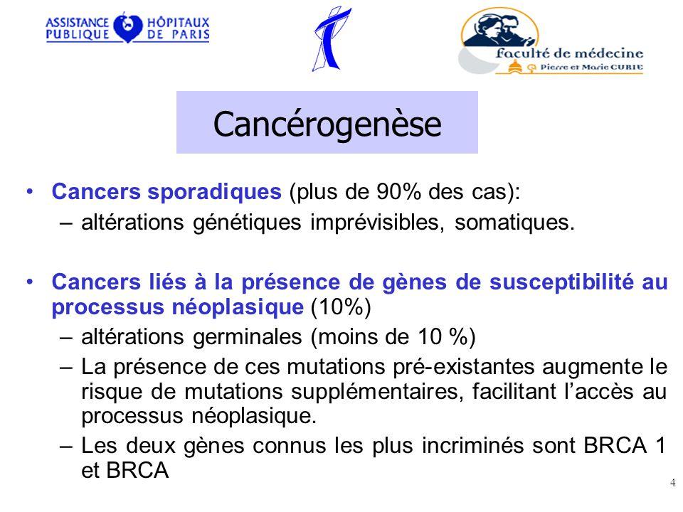 Cancérogenèse Cancers sporadiques (plus de 90% des cas): –altérations génétiques imprévisibles, somatiques.