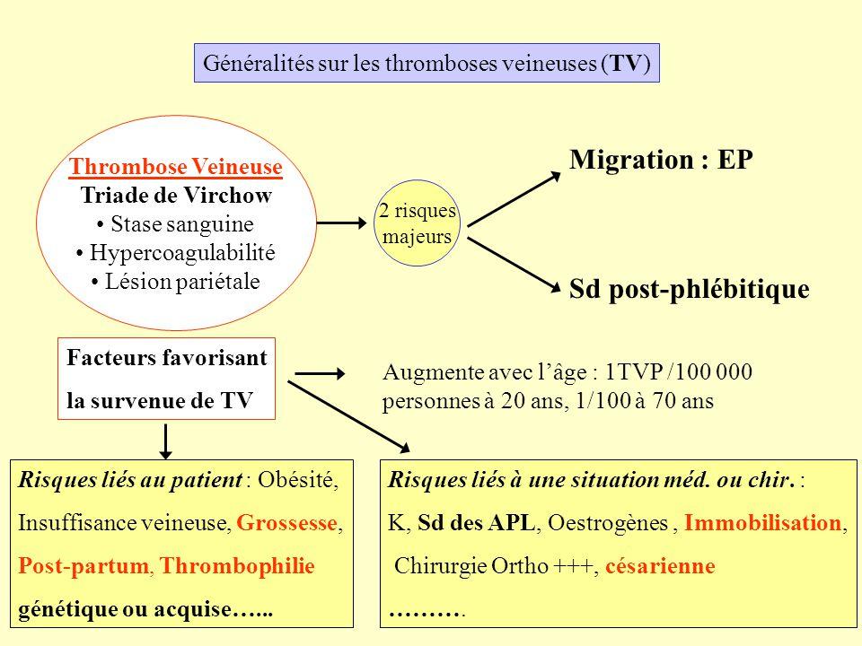 Généralités sur les thromboses veineuses (TV) Thrombose Veineuse Triade de Virchow Stase sanguine Hypercoagulabilité Lésion pariétale 2 risques majeur