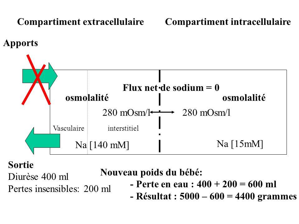 osmolalité Compartiment intracellulaireCompartiment extracellulaire interstitielVasculaire Na [15mM] Na [140 mM] 280 mOsm/l Flux net de sodium = 0 Sor