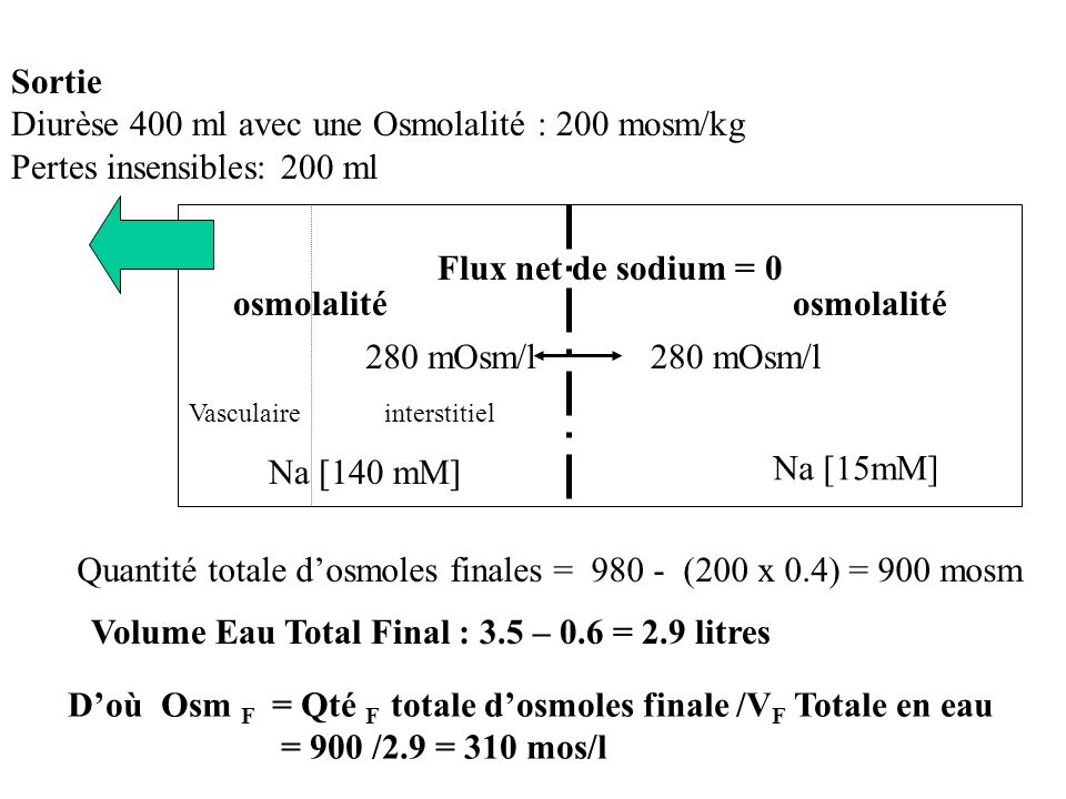 Qté totale dosmoles intracellulaires = Cste Qté totale dosmoles intracellulaires = 280 x 2.3 = 310 x V IC = Cste V IC = 280 x 2.3 /310 = 2.07 litres V Totale = V IC + V EC Doù V EC = 2.9 – 2.07 = 0.83 litre