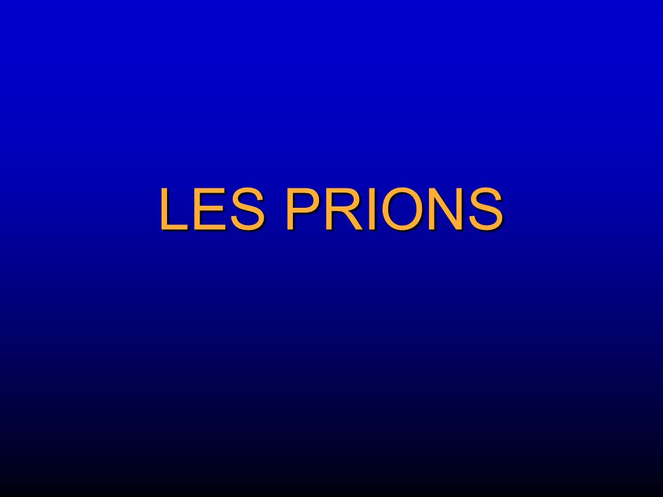 LES PRIONS
