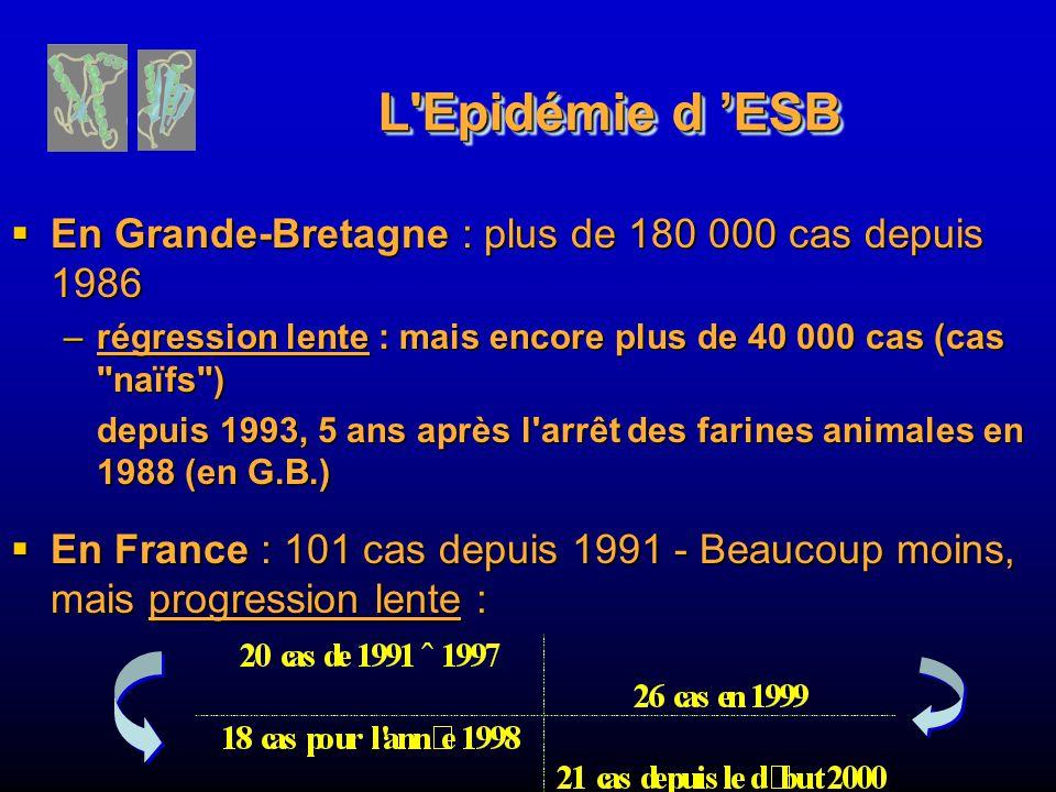 L Epidémie d ESB En Grande-Bretagne : plus de 180 000 cas depuis 1986 En Grande-Bretagne : plus de 180 000 cas depuis 1986 –régression lente : mais encore plus de 40 000 cas (cas naïfs ) depuis 1993, 5 ans après l arrêt des farines animales en 1988 (en G.B.) En France : 101 cas depuis 1991 - Beaucoup moins, mais progression lente : En France : 101 cas depuis 1991 - Beaucoup moins, mais progression lente :