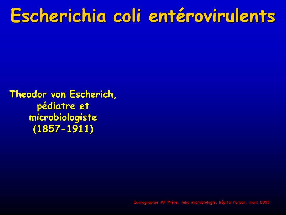 Les six pathotypes E coli classiques PATHOVAREPIDEMIOLOGIE SIGNES CLINIQUES E.coliEntéropathogène(EPEC) Enfants < 6 mois Tous pays - Diarrhée aqueuse E.coliEntérotoxinogène (ETEC) Voyageurs Enfants < 3 ans PVD - Diarrhée aqueuse E.coliEntéroinvasif(EIEC) Enfants, adultes Tous pays - Syndrome dysentérique E.coliEntérohémorragique(EHEC) Enfants, adultes Pays développés - Colite hémorragique -Syndrome hémolytique et urémique E.coliEntéroagrégatif(EAEC) EnfantsPVD - Diarrhée aiguë et persistante E.coli à adhésion diffuse (DAEC) Enfants Tous pays - Diarrhée aiguë et persistante MF Prère, labo microbiologie, hôpital Purpan, mars 2005