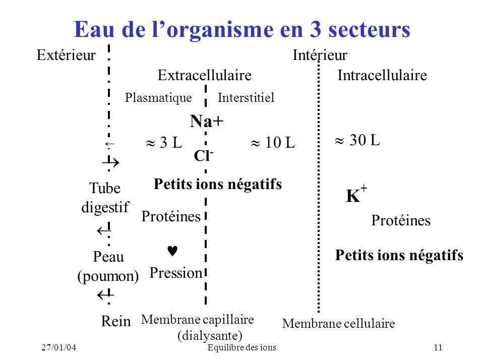 27/01/04Equilibre des ions11 Eau de lorganisme en 3 secteurs Extérieur Intérieur Extracellulaire Intracellulaire 30 L K + Protéines Pression Rein Memb