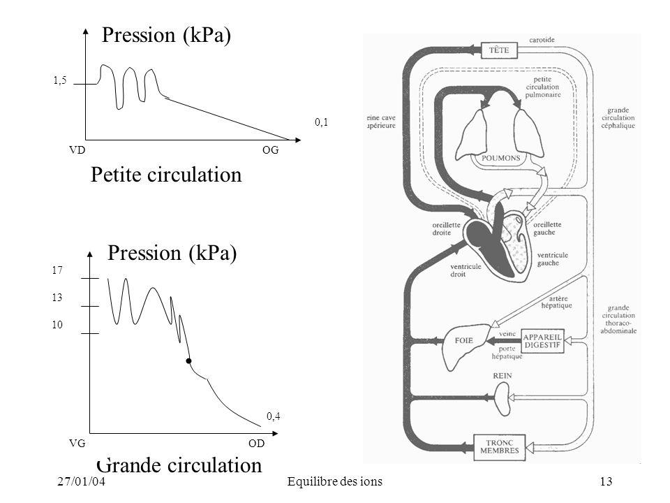 27/01/04Equilibre des ions13 Grande circulation OD 0,4 10 13 17 VG Pression (kPa) 0,1 OGVD 1,5 Petite circulation Pression (kPa)