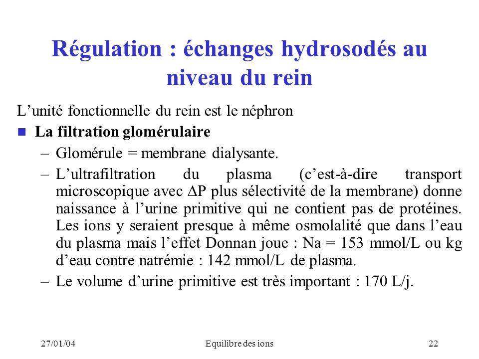27/01/04Equilibre des ions22 Régulation : échanges hydrosodés au niveau du rein Lunité fonctionnelle du rein est le néphron La filtration glomérulaire
